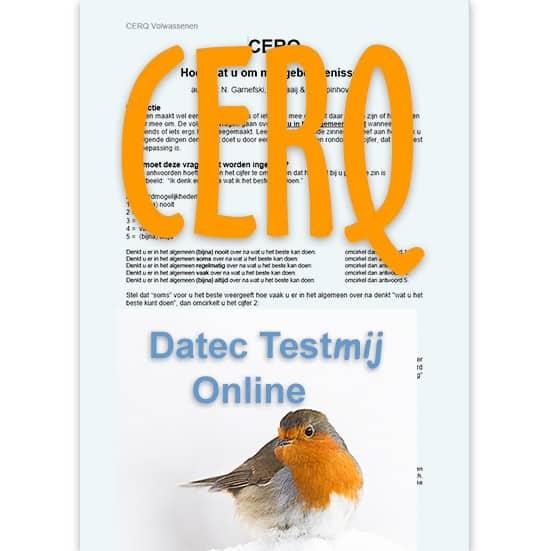 CERQV met Online