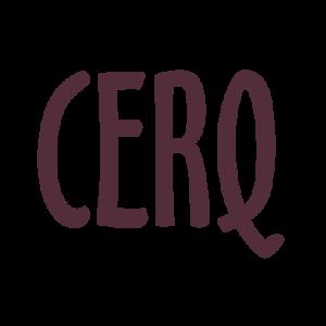 CERQ Vragenlijst