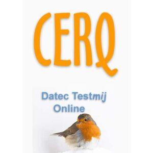CERQ Online