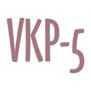 VKP-5 DSM-5